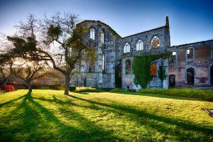 Abbaye d'Aulne - Ruines de l'église abbatiale